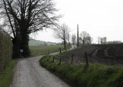 werkretraite op het platteland